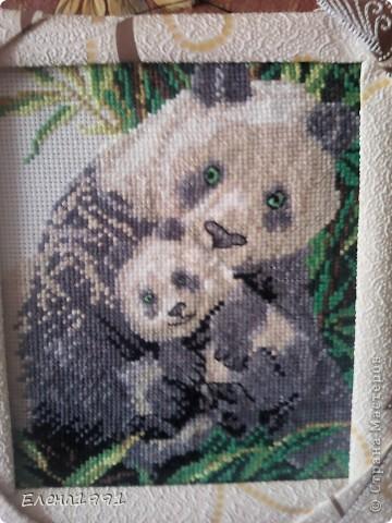 Панды (мама и малыш) фото 1