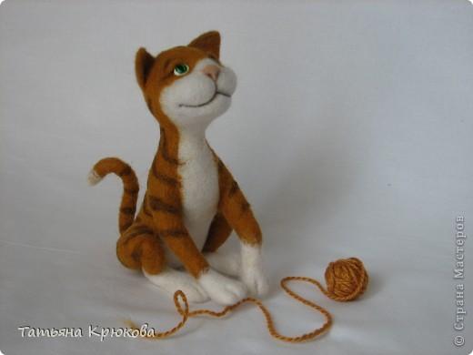 Рыжий кот,почти что тигр... фото 5