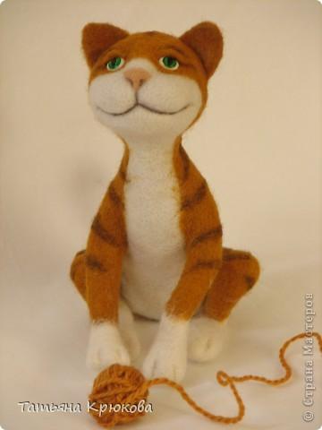 Рыжий кот,почти что тигр... фото 6