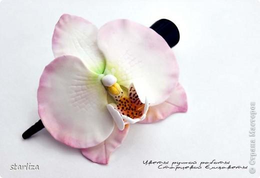 Продолжается неравный бой с орхидеей фаленопсис, чувствую улучшения))))  Вот такой вот зажимчик получился (7.5 см) фото 1