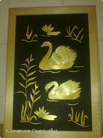 Лебеди)