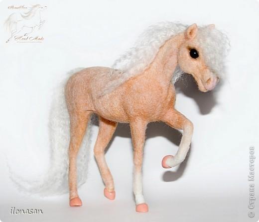 Уэльский пони — порода, известная со времён Юлия Цезаря. В настоящее время в породе различают три типа: уэльский горный пони — наиболее мелкие лошади, не выше 122 см в холке; средний тип — ростом 110—136 см и, наконец, уэльский коб для игры в конное поло — от 137 до 159 см в холке. Последний тип лошадей появился в результате прилития крови чистокровных верховых и арабских жеребцов. Несмотря на небольшой рост, эти лошадки очень пропорциональны и красивы.  Данная лошадка соловой масти (паломино). Общая высота 18 см, высота в холке 13,5 см, длина 19 см.  фото 2