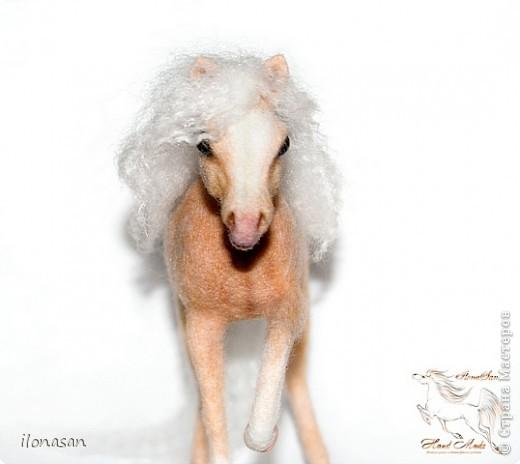Уэльский пони — порода, известная со времён Юлия Цезаря. В настоящее время в породе различают три типа: уэльский горный пони — наиболее мелкие лошади, не выше 122 см в холке; средний тип — ростом 110—136 см и, наконец, уэльский коб для игры в конное поло — от 137 до 159 см в холке. Последний тип лошадей появился в результате прилития крови чистокровных верховых и арабских жеребцов. Несмотря на небольшой рост, эти лошадки очень пропорциональны и красивы.  Данная лошадка соловой масти (паломино). Общая высота 18 см, высота в холке 13,5 см, длина 19 см.  фото 3
