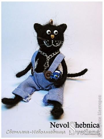 И снова котик))) и снова черный))) Только теперь он модный пацан с зачетной игрушкой в виде машинки) фото 1
