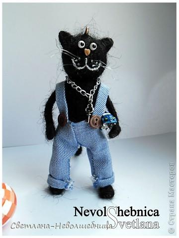 И снова котик))) и снова черный))) Только теперь он модный пацан с зачетной игрушкой в виде машинки) фото 5