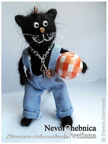 И снова котик))) и снова черный))) Только теперь он модный пацан с зачетной игрушкой в виде машинки) фото 8