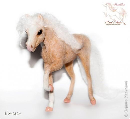 Уэльский пони — порода, известная со времён Юлия Цезаря. В настоящее время в породе различают три типа: уэльский горный пони — наиболее мелкие лошади, не выше 122 см в холке; средний тип — ростом 110—136 см и, наконец, уэльский коб для игры в конное поло — от 137 до 159 см в холке. Последний тип лошадей появился в результате прилития крови чистокровных верховых и арабских жеребцов. Несмотря на небольшой рост, эти лошадки очень пропорциональны и красивы.  Данная лошадка соловой масти (паломино). Общая высота 18 см, высота в холке 13,5 см, длина 19 см.  фото 4