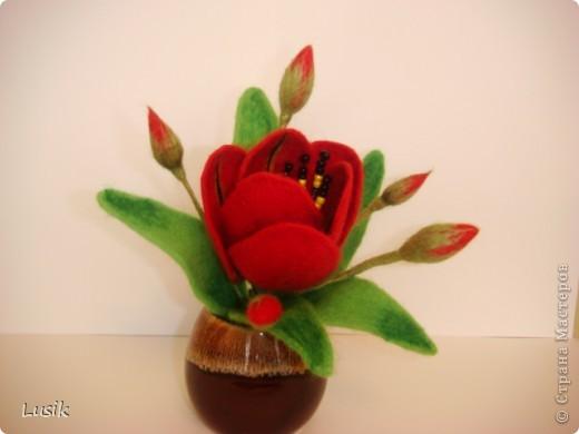 Первые мои валяные цветочки, немного смешные и совсем простенькие. фото 6