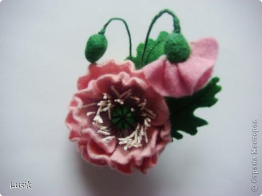 Первые мои валяные цветочки, немного смешные и совсем простенькие. фото 13