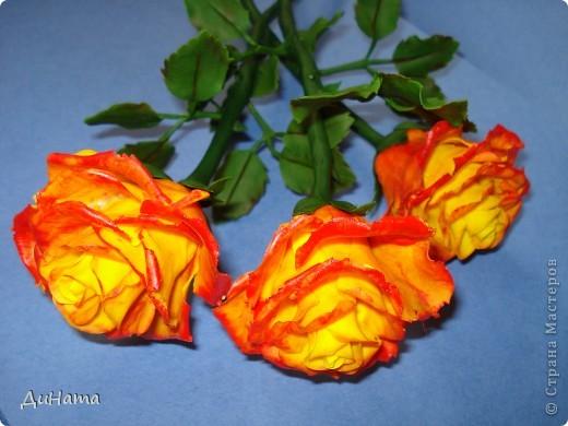 """Я опять к вам с розами,продолжаю уже не просто лепить,а еще потом и """"разукрашивать"""" цветы,процесс очень нравится фото 1"""