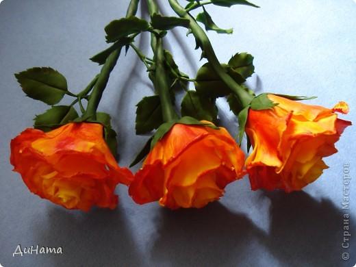 """Я опять к вам с розами,продолжаю уже не просто лепить,а еще потом и """"разукрашивать"""" цветы,процесс очень нравится фото 4"""