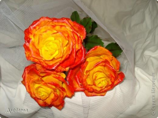 """Я опять к вам с розами,продолжаю уже не просто лепить,а еще потом и """"разукрашивать"""" цветы,процесс очень нравится фото 5"""