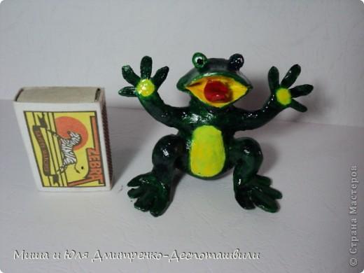 Дразнящаяся лягушка фото 3