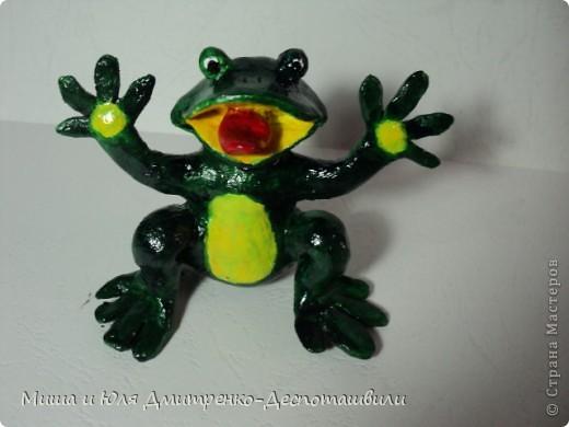 Дразнящаяся лягушка фото 2