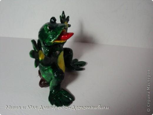 Дразнящаяся лягушка фото 4