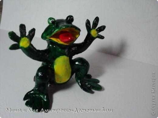 Дразнящаяся лягушка фото 1
