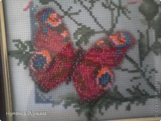 Одна из первых работ. Вышивка из набора Panna,только немного с импровизацией. фото 2