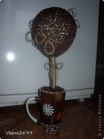Дерево кофе с молоком фото 3