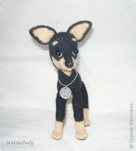 Одежда для собаки вязанная спицами