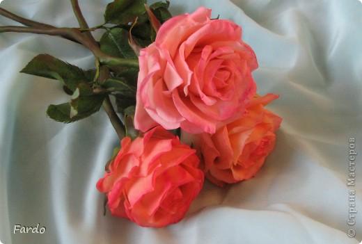 Завтра у моей хорошей знакомой День Рождения. Вот пришлось в авральном режиме лепить розу. На самом деле роз три... но получилась на мой вкус только первая.  Прошу прощение за качество фотографий, быстро лепила, быстро фотографировала... фото 8