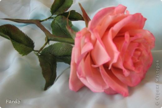 Завтра у моей хорошей знакомой День Рождения. Вот пришлось в авральном режиме лепить розу. На самом деле роз три... но получилась на мой вкус только первая.  Прошу прощение за качество фотографий, быстро лепила, быстро фотографировала... фото 3
