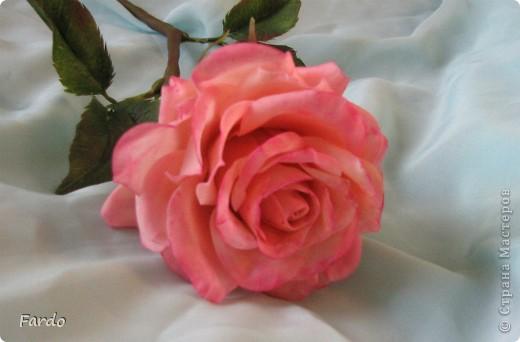 Завтра у моей хорошей знакомой День Рождения. Вот пришлось в авральном режиме лепить розу. На самом деле роз три... но получилась на мой вкус только первая.  Прошу прощение за качество фотографий, быстро лепила, быстро фотографировала... фото 4