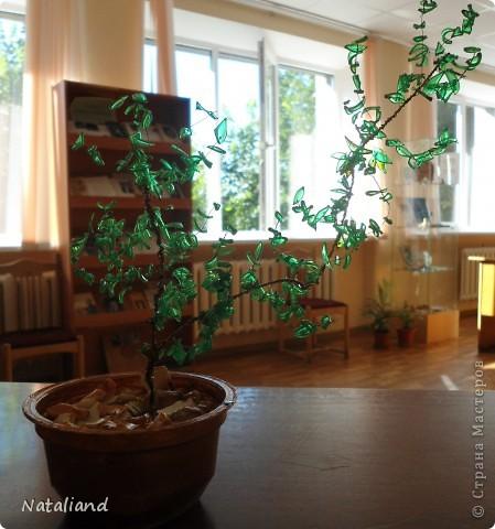 Дерево с листочками из пластиковых бутылок