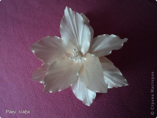 Мой фотоотчет по лилии ,Спасибо огромное за масстер-класс Елене Демидовой (ELENA DEMIDOVA)  !!! Вот такая лилия у меня получилась !!! фото 4