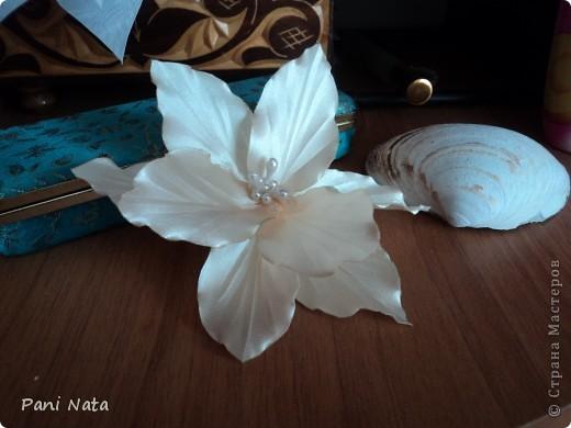 Мой фотоотчет по лилии ,Спасибо огромное за масстер-класс Елене Демидовой (ELENA DEMIDOVA)  !!! Вот такая лилия у меня получилась !!! фото 2