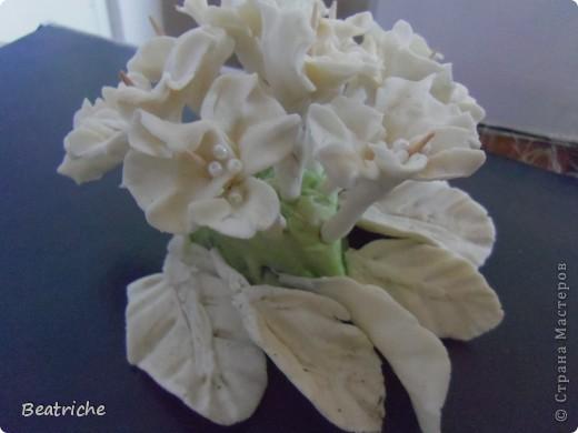 на основу-сердце наделала цветков и закрепила на шпажках фото 3