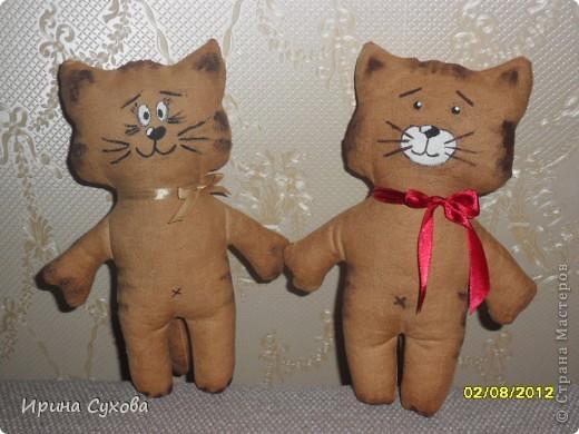 Вот они какие получились! Планировалось сделать чету котиков. Но.... Котики сами определились. Теперь у нас живут Мистер Кэт (с красным бантиком) и Мистер Кокошка.