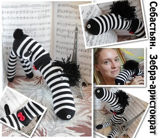 Знакомьтесь - Себастьян. Это зебра-аристократ. Он умеет играть на скрипке и отлично говорит по-французски. Но главная страсть Себастьяна - танцы. фото 1
