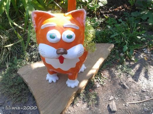 Кот кашпо фото 4