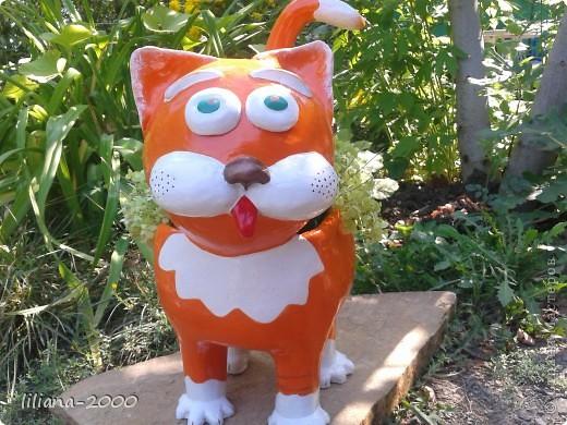 Кот кашпо фото 1