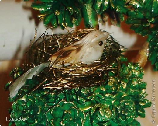 вот такое вот деревце я смастерила в подарок мужу сестры ко дню рождения. райская птичка свила на нем свое гнездышко... вот так вот символично вышло))) фото 3