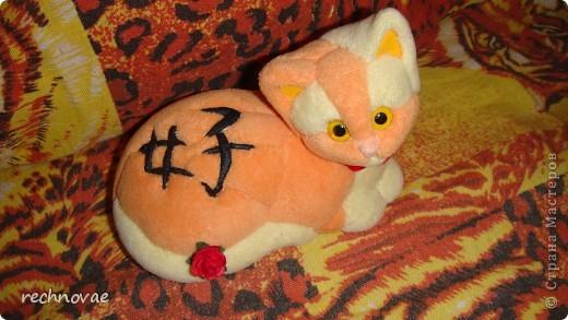 """На боку у кошки японский иероглиф """"ЛЮБИТЬ"""" состоит из 2-х элементов: ЖЕНЩИНА (слева) и РЕБЕНОК (справа) фото 1"""