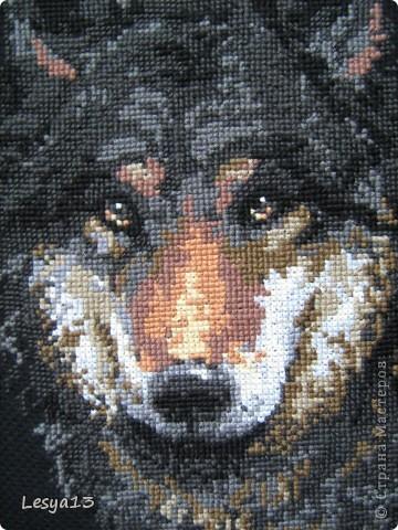 Первый раз вышивала на черной канве. Результат, конечно, эффектный, ничего не скажешь :) Но и вышивать посложнее...  фото 7