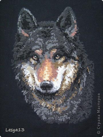 Первый раз вышивала на черной канве. Результат, конечно, эффектный, ничего не скажешь :) Но и вышивать посложнее...  фото 6