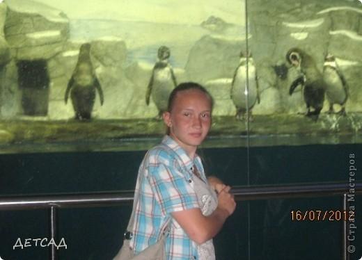 Анапа - республика  детства Вот так встретил нас город-курорт фото 3