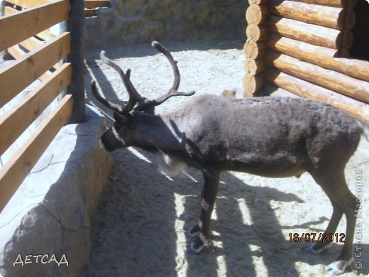 Анапа - республика  детства Вот так встретил нас город-курорт фото 7