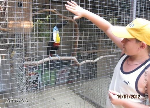 Анапа - республика  детства Вот так встретил нас город-курорт фото 13