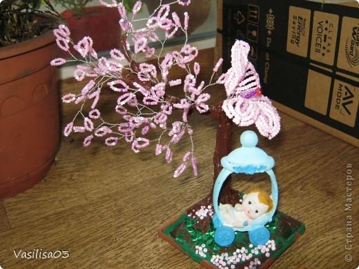 Сакура-цветок фото 3