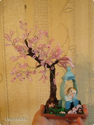 Сакура-цветок фото 2