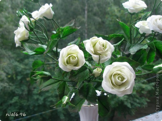 Кустовая роза фото 2