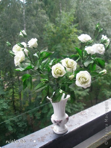 Кустовая роза фото 1