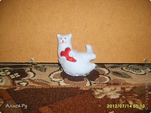 Котик по СП с Улей!!! фото 1