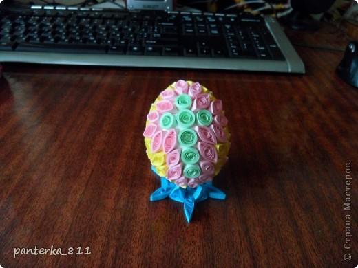 яицо фото 3