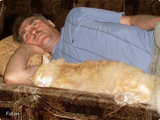 Всем привет! Сегодня просто день кошек в СМ. Вот и я решила похвастаться своим любимчиком. И так знакомьтесь, Масик, Масевич, Масяня и т д, откликается на любой вариант, кроме Кис-кис. фото 8