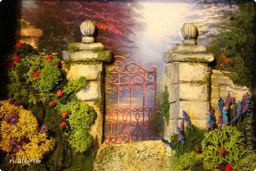 Ворота в сказку фото 1