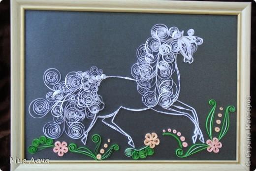Лошадка. фото 5